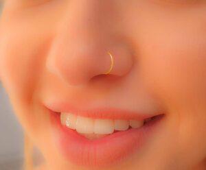 fake nose ring